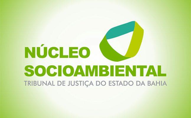 Nucleo-Socioambiental-647x400 Núcleo Socioambiental do Poder Judiciário da Bahia debate estratégias de ação em reunião por videoconferência