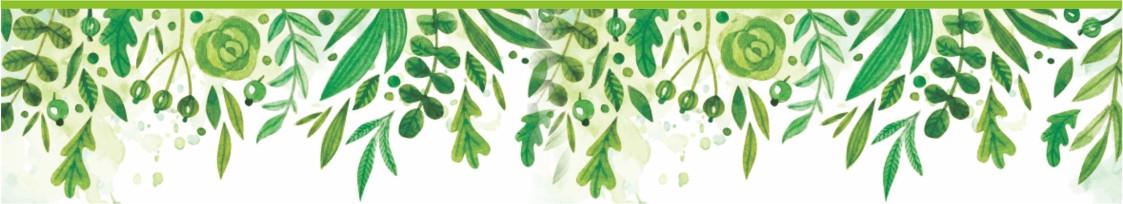 arte-pagina-nucleo-socio-ambiental Núcleo Socioambiental
