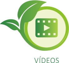 bt-videos-sociambiental Núcleo Socioambiental