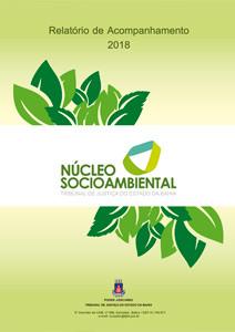 relatorio-de-acompanhamento-ecoplan-2018 Núcleo Socioambiental - Relatórios