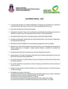 relatorio-parcial-2019-nucleo-socioambiental-231x300 Núcleo Socioambiental - Relatórios