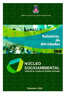 capa-relatorio-de-atividades-nucleo-socio-ambiental-2020 Núcleo Socioambiental - Relatórios
