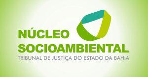 ncl-socioambiental_742-300x157 Reunião do Núcleo Socioambiental discute novas ações para implementar no PJBA