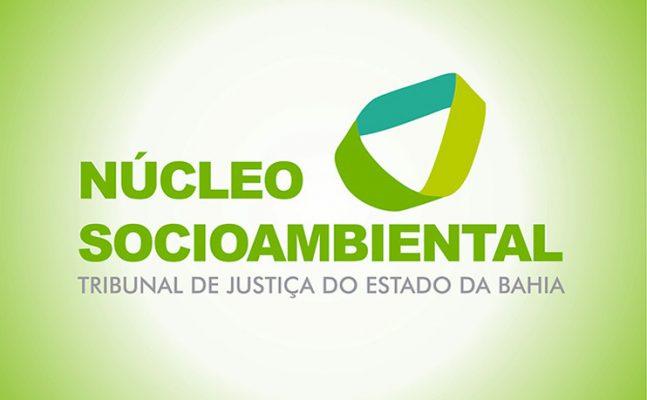 ncl-socioambiental_742-647x400 PROJETO JARDINAGEM DO NÚCLEO SOCIOAMBIENTAL GANHA ÁRVORES FRUTIFERAS