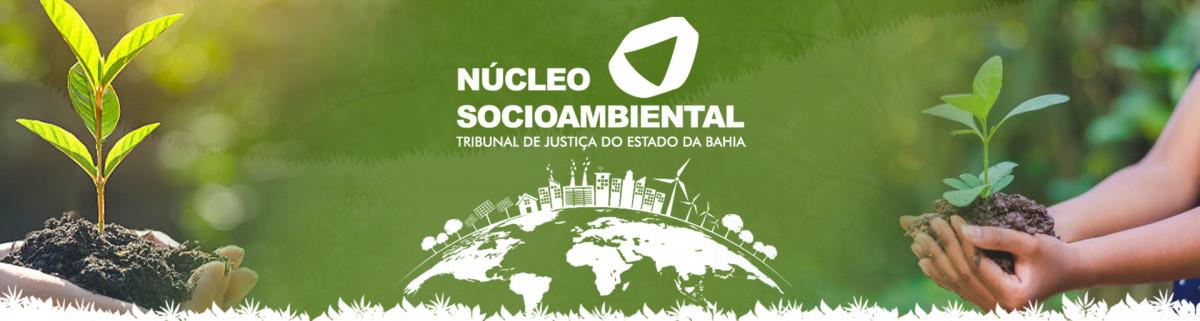 Banner-do-site-03 Núcleo Socioambiental