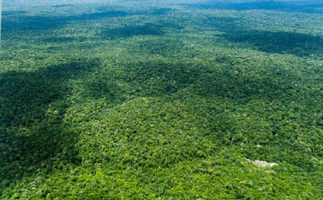 amazonia-Foto-Gilberto-SoaresMMA-1-647x400 Boas práticas processuais voltadas à proteção ambiental serão premiadas pelo CNJ